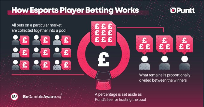 punt esports betting explained